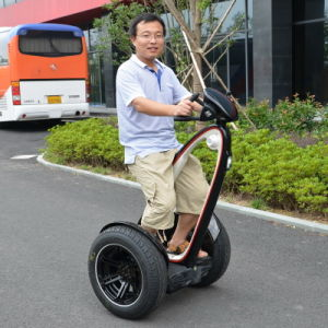 Freeyoyo Two Wheel Self-Balancing Electric Personal Transporter G3 pictures & photos