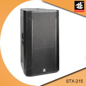 Dual 15 Inch Wooden Passive Speaker Stx-215 pictures & photos