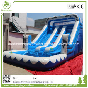 Best Seller! China Factory Price Customized Commercial Inflatable Bouncer pictures & photos