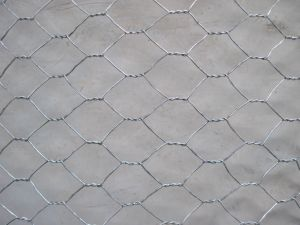 "Galvanized Hexagonal Wire Mesh 1/2"" to 2"" pictures & photos"