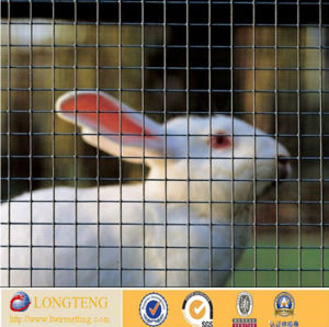 Welded Animal Cage/Welded Mesh for Cages (LT-1472)