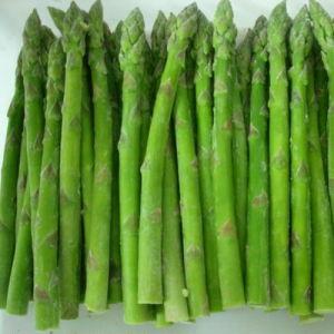 IQF Asparagus, Brc, FDA, Kosher, HACCP, Gap, ISO
