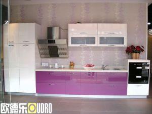 Kitchen Cabinet (ODR-K009)