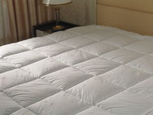 Hotel Bedding, Down Duvet (SDF-B015) pictures & photos