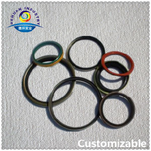 FKM Oil Seal Manufacturer pictures & photos