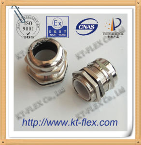 Nickel Plated Brass Pg Cable Gland (CGB)