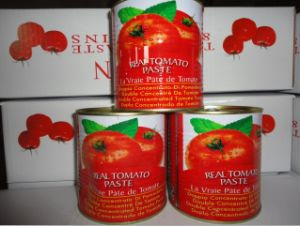 800g Tinned/Canned Tomato Paste Ketchup, Tomato Sauce, Tomato Puree