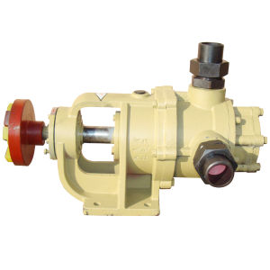 Nyp3 High Viscosity Internal Gear Pump pictures & photos