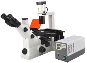 Bestscope Bs-7020 Inverted Fluorescent Biological Microscope pictures & photos