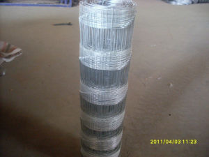 High Quality Hog Wire Fence in Competitive Price pictures & photos