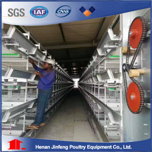 H Type Used Poultry Battery Cage for Nigeria Farm pictures & photos