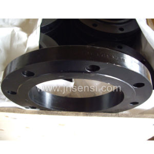 Forged Carbon Steel Flange pictures & photos