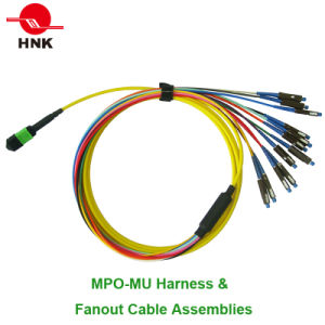 MPO Harness & Fan out Cable Assemblies pictures & photos