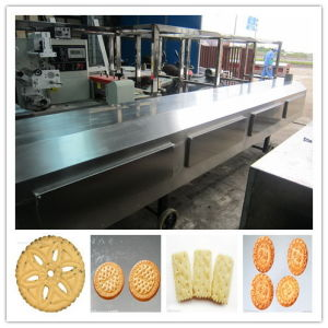 China Supplier Biscuit Making Machine/Biscuit Machine Manufacture Sh-10000 pictures & photos