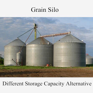Best Quality Grain Silo for Paddy Storage pictures & photos