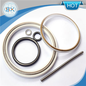 PTFE Spring Energized Seals for Air Cylinder/Piston pictures & photos