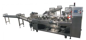 High Speed 2 Color Sandwiching Machine pictures & photos