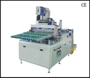 Auto Screen Printing Machine pictures & photos