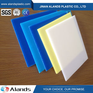 Blue PP Corrugated Sheet for Pallet pictures & photos