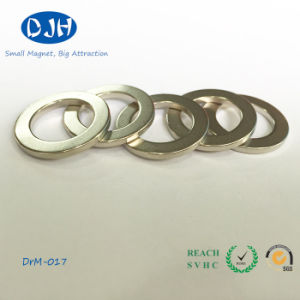 N52 Permanent Magnetic Neodymium NdFeB Magnet (DRM-017) pictures & photos
