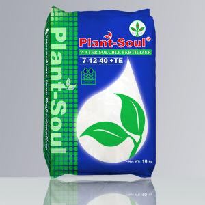 NPK Powder Fertilizer Manufacturer pictures & photos