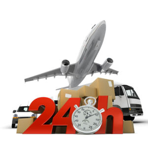 Door to Door, Fast and Safe Logistics Service From China to South American pictures & photos