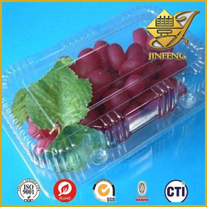 PVC Blister Film in Roll for Food Packaging pictures & photos