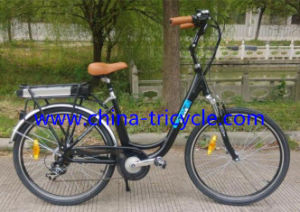 250W Motor Lithium Battery for Electric Bike (SP-EB-06) pictures & photos