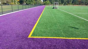 50mm Certified Supreme Football Artificial Grass pictures & photos