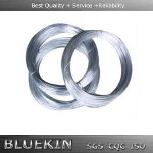Cheap Galvanised Iron Wire for Sale