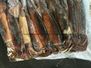 Sea Frozen Illex Squid for Sale pictures & photos