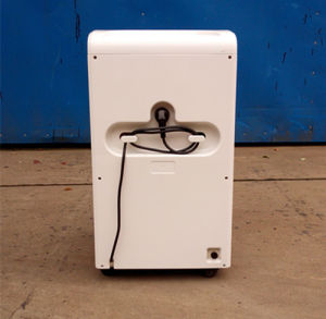UK /EEC/America/Japan/South Africa/ Australia/ Standard Dehumidifier with Remote and Air Cleaner pictures & photos