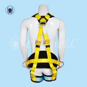 Seat Belt with Waist Belt and EVA Block (EW0116H) pictures & photos