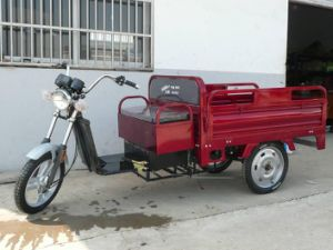 Super Power Electric Tricycle Rickshaw 800W (HD-026) pictures & photos