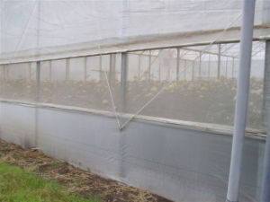 100% New HDPE Anti Insect Net for Agriculture pictures & photos