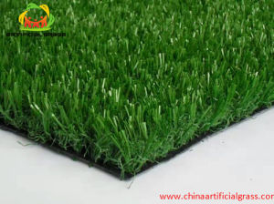 Near Sea Shore Putting Synthetic Turf Grass Tiles with SGS Certification pictures & photos