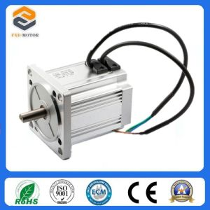 110mm Brushless DC Motor with ISO9001 Certification pictures & photos