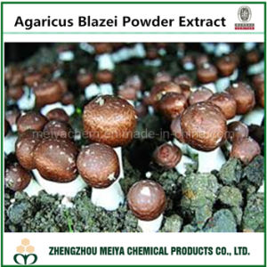 China Origin Functional Ingredient Powder Agaricus Blazei Powder Extract 5: 1, 10: 1 with Polysaccharides pictures & photos