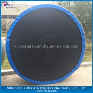 Polyster Fabric Conveyor Belt for Shipment pictures & photos