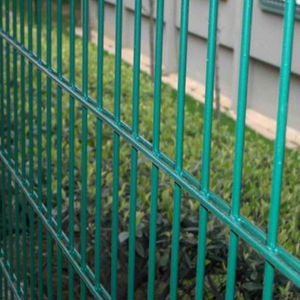 High Quality Welded Wire Mesh Fence From China Manufacturer pictures & photos