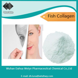 Food or Cosmetic Grade 90% 95% Skin Whitening Fish Collagen pictures & photos