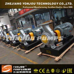 Lqry 370 Degree Temperature Hot Oil Pump pictures & photos