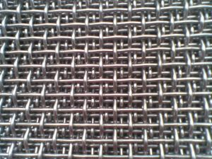 Crimped Wire Mesh pictures & photos