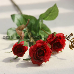 Colorful Artificial Wedding Rose Flower for Decoration (SF15586A) pictures & photos