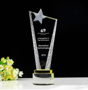 High Quality Optical Star Crystal Glass Shield Trophy Award pictures & photos