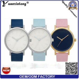 Yxl-672 2016 New Arrival Marble Face Watch Custom Brand Your Own Watches in The Horse Watch pictures & photos