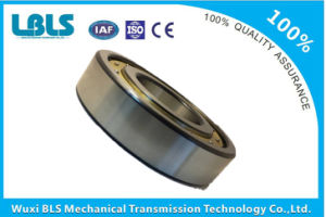 Nj-213 Koyo Cylindrical Roller Bearing