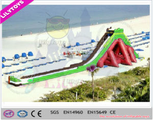Lilytoys! Giant UAE Design Safe Adult Inflatable Hippo Slide for Beach Party (V-HP-052) pictures & photos
