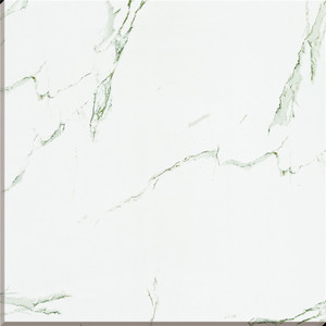 White Back Full Polished Glazed Tiles pictures & photos
