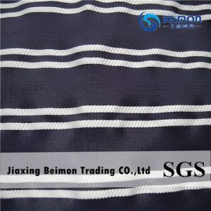 Stripe Tulle Shirt Fabric in Yarn Dyed for Lady′s Voile Shirt. pictures & photos